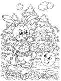 Roly-Poly et lièvres Photos stock