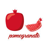 A romã frutifica cartaz no estilo dos desenhos animados descrição inteira e metade Suculento fresco No fundo branco Imagens de Stock