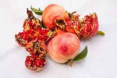 Romã maduras frescas da árvore imagem de stock