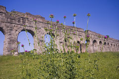 Rom: der Park von Aquädukten Lizenzfreies Stockbild