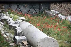 Rom: ein Bild von Kaiserlöchern Lizenzfreie Stockfotografie
