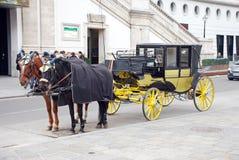 Wagen mit zwei Pferden Stockfotografie