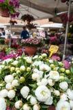 Rom, Markt Campo-Des 'Fiori Stockbild