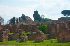Rom Palatine Stockbilder