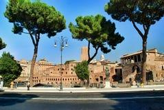 Rom, Palatine kiefer lizenzfreies stockbild