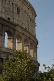 Roma - colosseum Imagen de archivo libre de regalías