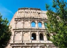 ROMA, Italia: Grande Roman Colosseum Coliseum, Colosseo anche conosciuto come Flavian Amphitheatre, con gli alberi verdi Lan famo immagine stock libera da diritti