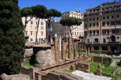 Roma Italia la historia de la excavación de la arqueología del refugio del gato de Torre la Argentina Imagen de archivo libre de regalías