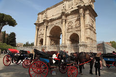 ROMA, ITALY, APRIL 7, 2016 : Coachman sits on a carriage, pulled Royalty Free Stock Photography