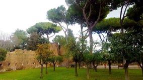 Roma, jardín anaranjado metrajes