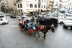 Roma, Lazio, Itália 20 de julho de 2017 Colle típico dos cavalos com fotos de stock