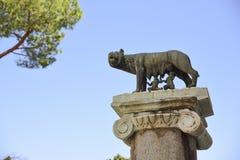 Roma, Lupa Capitolina, símbolo da cidade de Roma Romulus e R Foto de Stock Royalty Free