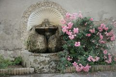 Roma Rose Garden fotografia stock libera da diritti