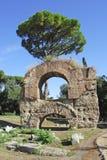 Roma, ruinas antiguas en la colina de Palatine Fotos de archivo libres de regalías