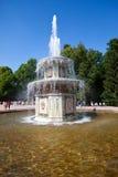 Romańskie fontanny Petrodvorets petersburg Zdjęcie Stock
