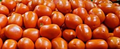 Roma Tomatoes Image libre de droits
