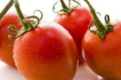 Roma tomatoes Stock Images