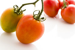 Roma tomatoes Royalty Free Stock Images