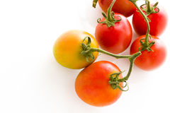 Roma tomatoes Stock Photo