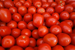 Roma Tomatoes. A stack of Roma tomatoes, also known as Italian tomatoes or Italian plum tomatos Stock Image