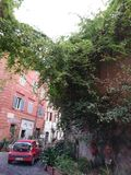 Roma verde fotografía de archivo libre de regalías