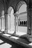 Romaanse kolommen Royalty-vrije Stock Fotografie