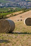 Romagna countryside Stock Photography