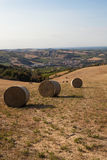 Romagna countryside Royalty Free Stock Image