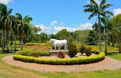 Romagnola公牛雕象在Rockhampton,澳大利亚 免版税库存照片