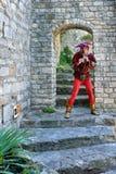 Romaine Ла Vaison, Провансаль стоковая фотография rf