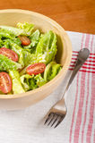 Romaine and Grape Tomato Salad #2 Royalty Free Stock Photography