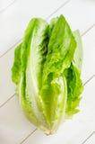 Romaine lettuce Stock Image