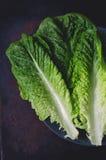 Romaine Lettuce Stock Foto's