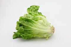 Romaine Lettuce photographie stock libre de droits