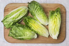 Free Romaine Lettuce Stock Images - 89340524