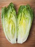 Romaine Lettuce Stock Afbeelding