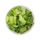 Romaine Lettuce Bowl isolated. On a white background Stock Photos