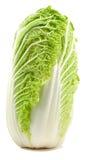 Romaine Lettuce Isolated Royalty Free Stock Photos