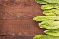 Romaine lettuce leaves Stock Images