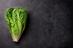 Romaine lettuce salad. Over stone table. Top view with copy space Stock Photos