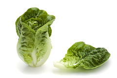 Romaine lettuce and single leaf Royalty Free Stock Image