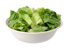 Romaine Salad Bowl isolerade Fotografering för Bildbyråer