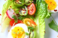 Romaine salad with egg and baby kiwifruit stock images