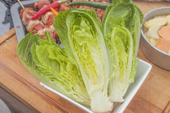 Romaine salad Stock Images