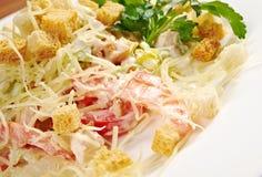 Romaine Salad Leaf Foto de archivo libre de regalías