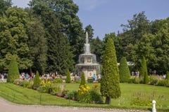 Romains喷泉在Peterhof宫殿,圣彼德堡公园  免版税图库摄影