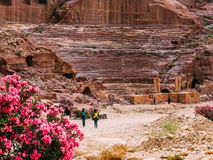 Roman Amphitheatre in Petra Royalty Free Stock Photography