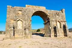Roman Ancient stad av Volubilis, Meknes, Unesco-världsarv S arkivbild