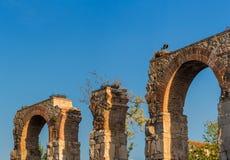 Roman Aqueduct Ephesus Selcuk Turkey Immagine Stock Libera da Diritti