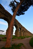 Roman aqueduct. Parco degli Acquedotti, Roma Royalty Free Stock Images